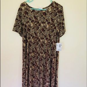 Camp lularoe Carly
